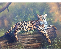 WILD CATS HAND PAINTED OIL PAINTING