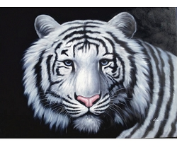 WHITE TIGER PRINCE HAND PAINTED OIL PAINTING