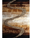VISCOSE SHAGGY DESIGN S10 BROWN AREA RUG