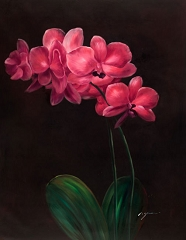 PINK ORCHID HAND PAINTED OIL PAINTING